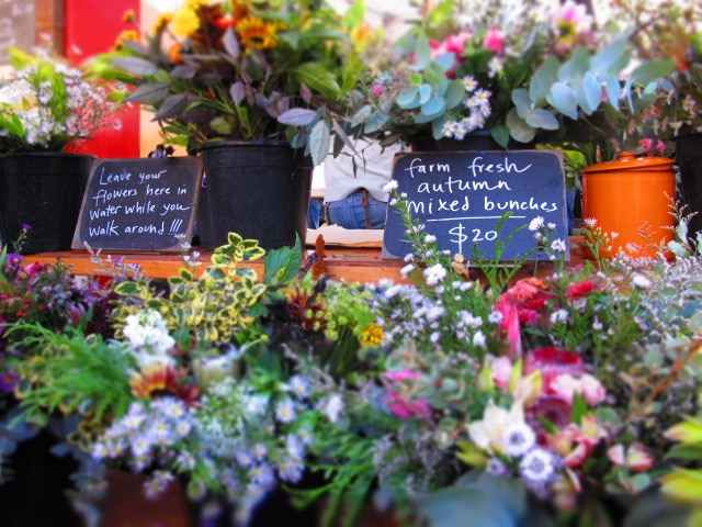Fresh Market Flowers - Salamanca Markets