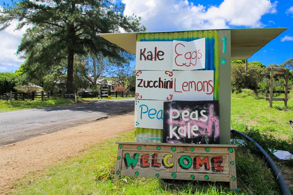 10 Things Locals Like to do in Byron Bay Roadside Stall Bangalow