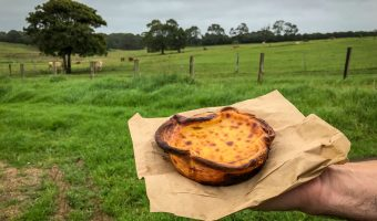 Portuguese Tart The Bread Social